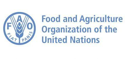 Logo of the FAO